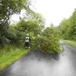 Umgestürzter Baum ragt in die Fahrbahn