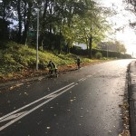 Ast wird entfernt und Straße gereinigt